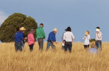 Platforms shaping agricultural practice